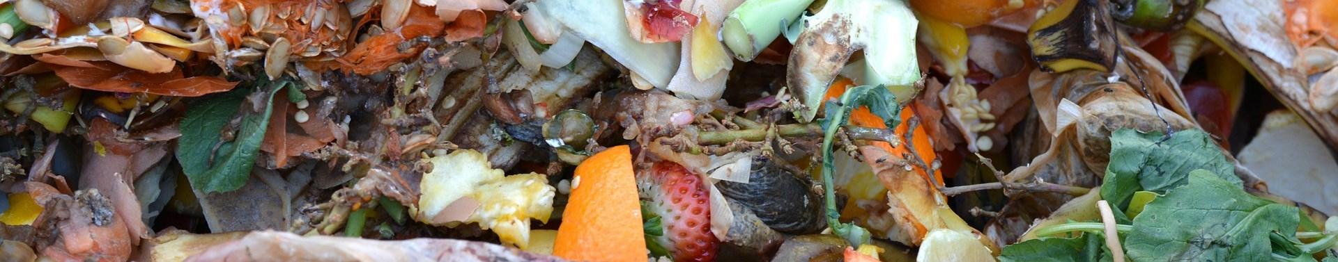 du compost