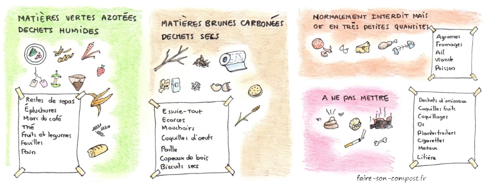 une infographie de ce qu'on peut mettre dans son compost