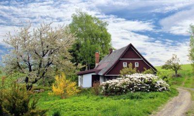 une maison avec jardin